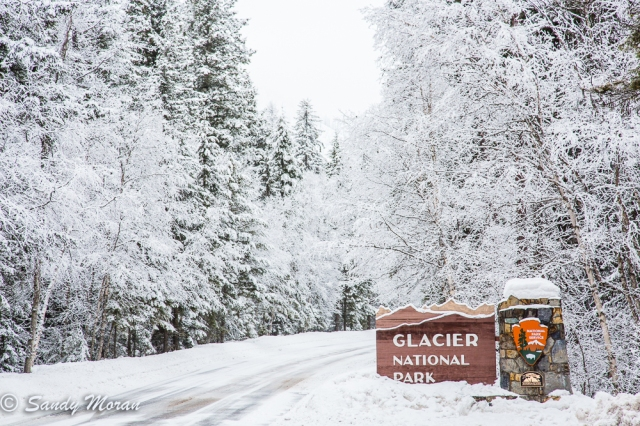 Glacier26